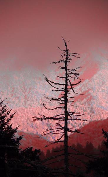 The Great Smoky Mountains Wall Art - Photograph - Red Shadows On The Smokies by Dan Sproul