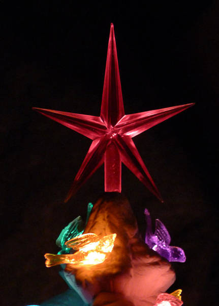 Photograph - Red Star by Richard Reeve