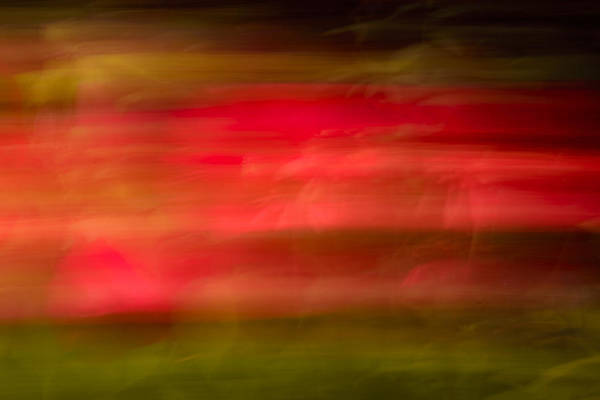 Photograph - Red Streak by Robert Mitchell