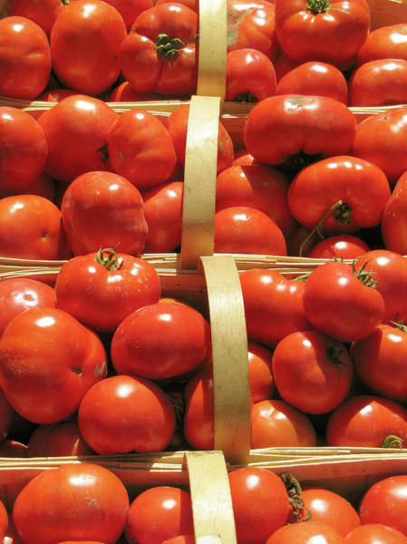 Retail Photograph - Red Tomatoes by Francois Dion