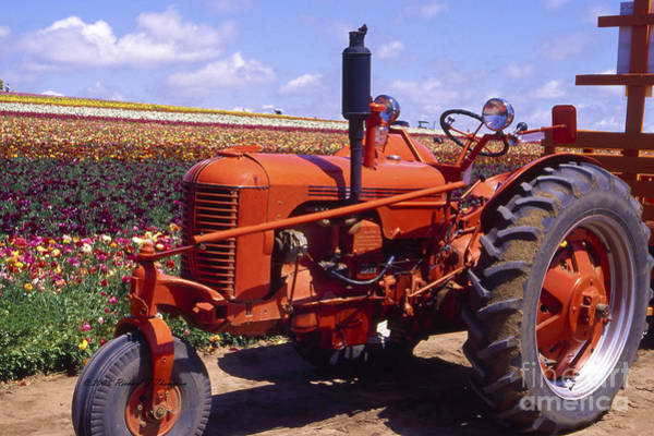Photograph - Red Tractor by Richard J Thompson