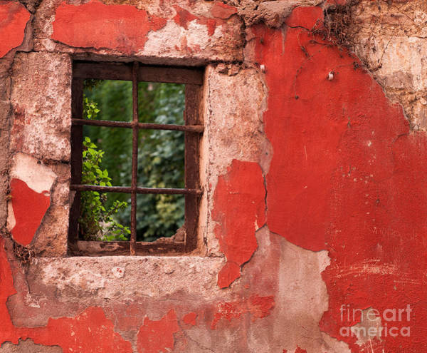 Rick Piper Photograph - Red Wall by Rick Piper Photography