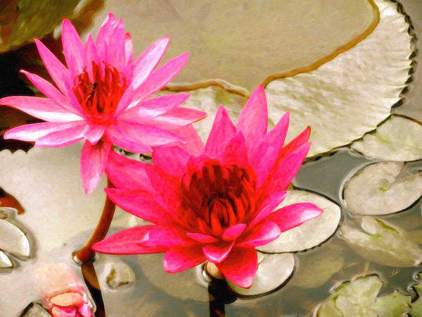 Painting - Red Water Lilies by Dean Wittle