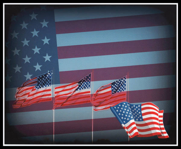 Photograph - Red White And Blue by Kay Novy