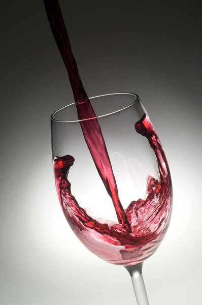 Filling Photograph - Red Wine by Daniel Sambraus/science Photo Library