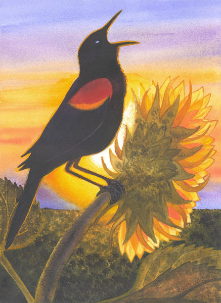 Painting - Red-wing Blackbird by Catherine G McElroy