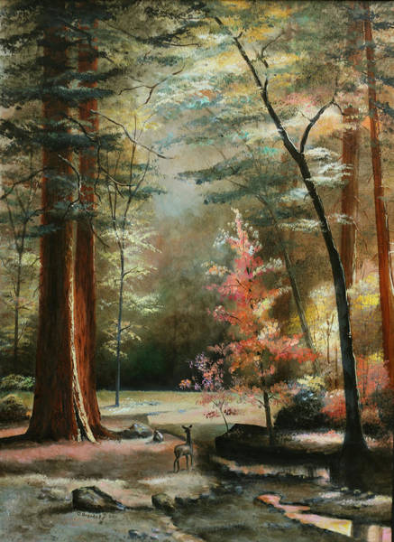 Wall Art - Painting - Redwood Forest by Cecilia Brendel