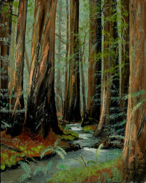 Wall Art - Painting - Redwood Forest Stream by Cecilia Brendel