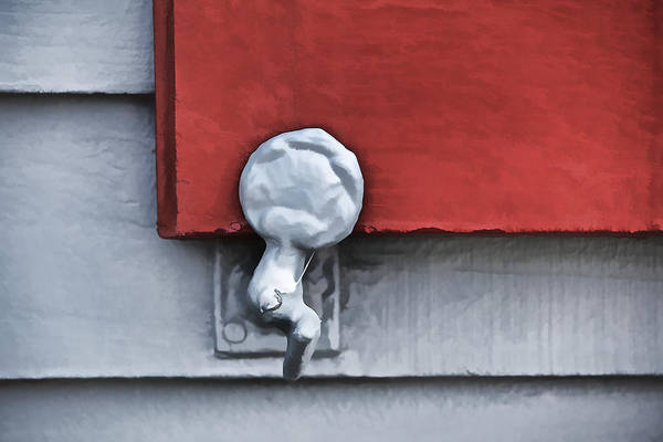 Photograph - Red Wood Window Shutter II by David Letts