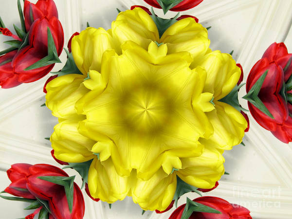 Photograph - Red Yellow And White Tulips Kaleidoscope by Rose Santuci-Sofranko