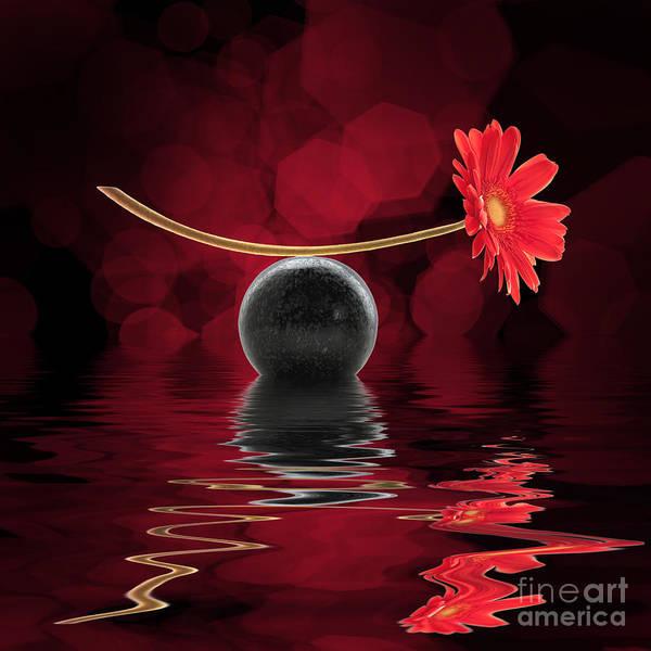 Gerbera Daisy Photograph - Red Zen Gerbera by Delphimages Photo Creations