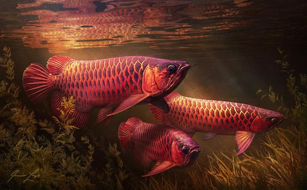 Aquatic Digital Art - Red_alignment by Javier Lazo