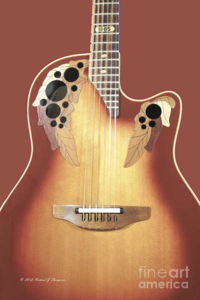 Photograph - Redish-brown Guitar On Redish-brown Background by Richard J Thompson