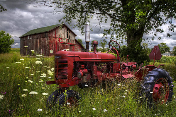 Old Barns Wall Art - Photograph - Reds In The Pasture by Debra and Dave Vanderlaan