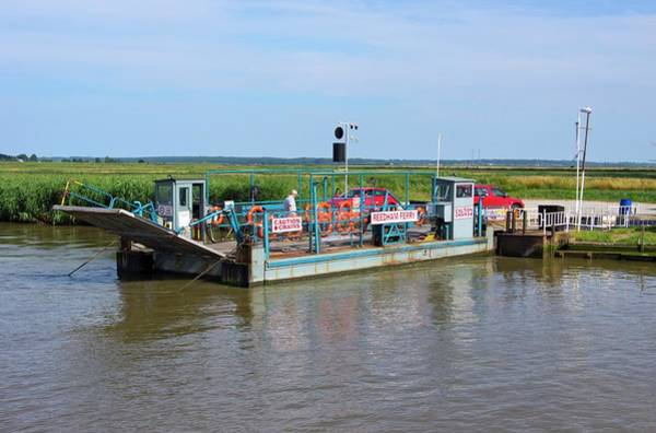 Chain Bridge Photograph - Reedham Ferry On The River Yare by Mark Williamson/science Photo Library
