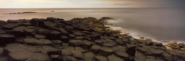 Basalt Photograph - Reef At The Giants Causeway, County by Panoramic Images