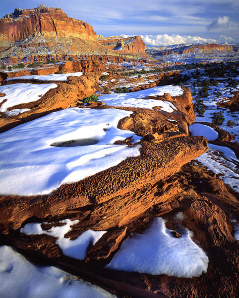 Photograph - Reef In Snow by Ray Mathis
