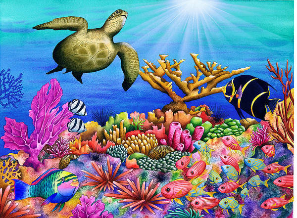 Corals Photograph - Reef Revelers by MGL Meiklejohn Graphics Licensing