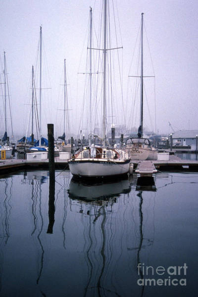 Sailing Terms Photograph - Refections Of Serenity by Skip Willits
