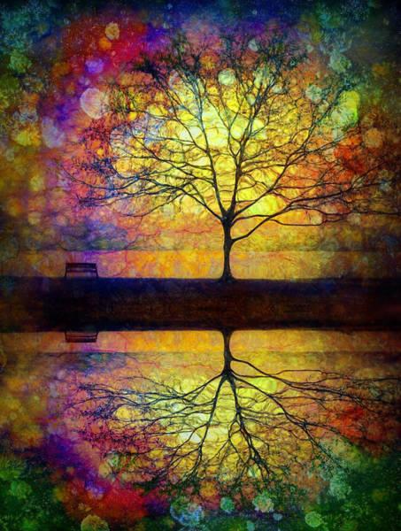Dun Photograph - Reflected Dreams by Tara Turner