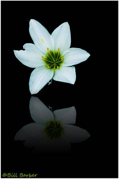 Photograph - Reflected Iris by Bill Barber