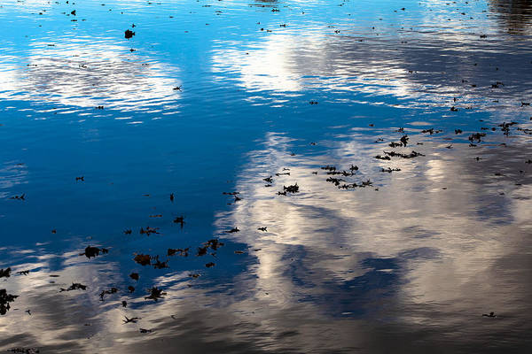 Photograph - Reflected Sky by Karen Saunders