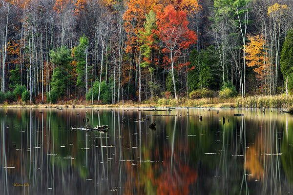 Photograph - Reflecting Autumn by Christina Rollo