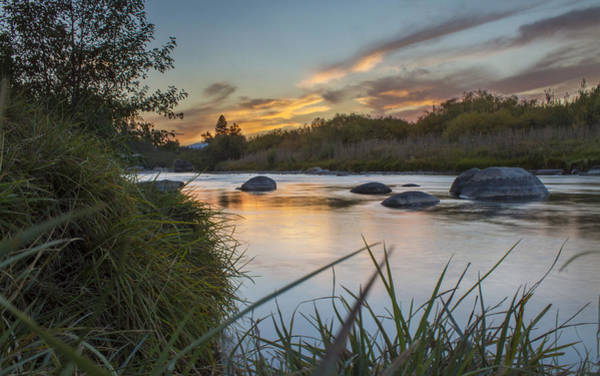 Truckee River Photograph - Reflecting by Jeremy Jensen