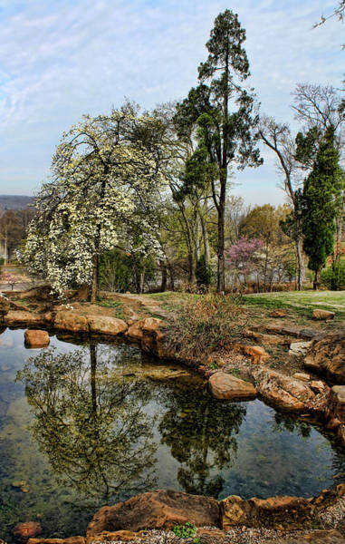 Honor Heights Park Photograph - Reflecting On Spring by Carolyn Fletcher