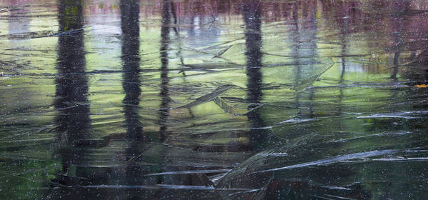 Wall Art - Photograph - Reflecting On Transitions by Mary Amerman