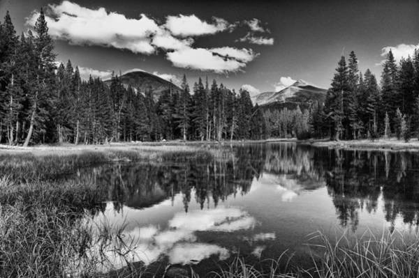 Photograph - Reflecting Pond by Cat Connor
