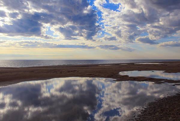 Photograph - Reflecting Pool by Rachel Cohen