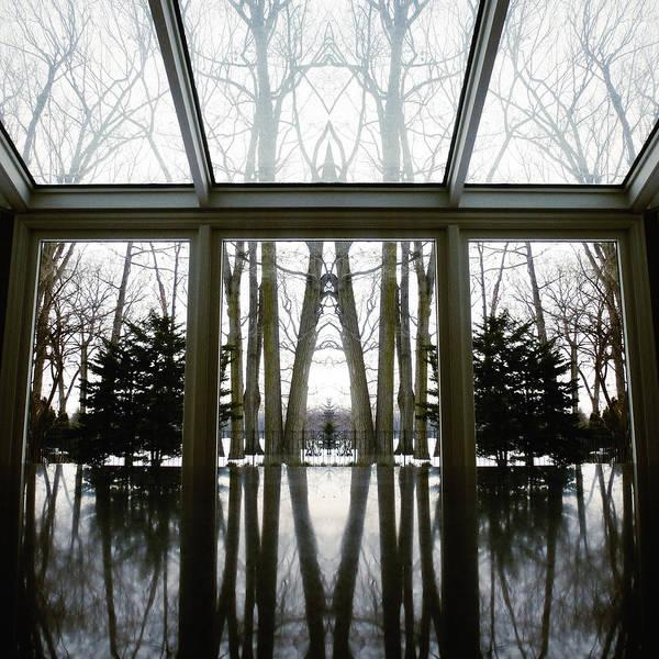 Photograph - Reflecting Reflections by Natasha Marco