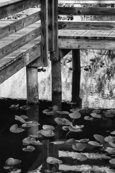 Photograph - Reflecting The Dock by Carolyn Marshall