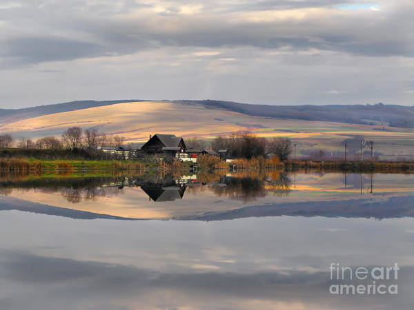 Photograph - Reflection A Mirror To Nature by Daliana Pacuraru