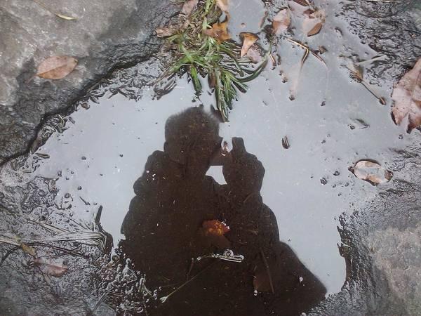 Photograph - Reflection by Felix Zapata