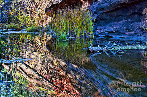 Oak Creek Canyon Painting - Reflection In The Water by Brian Lambert