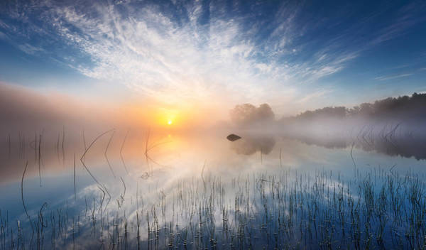 Fog Photograph - Reflection by Martin Lutz