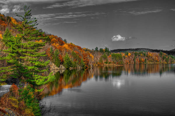Waterbury Photograph - Reflection by Mike Horvath