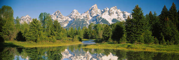 Schwabacher Photograph - Reflection Of A Snowcapped Mountain by Panoramic Images