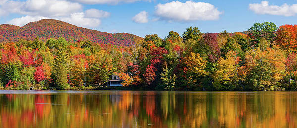 Bolton Photograph - Reflection Of Autumn Trees In A Pond by Panoramic Images