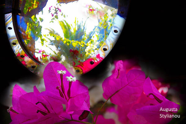 Photograph - Reflection Of Exotic Scene by Augusta Stylianou
