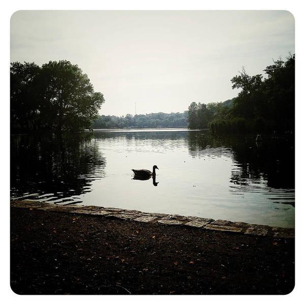 Photograph - Reflection Of Serenity by Natasha Marco