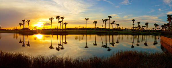 Lake Worth Wall Art - Photograph - Reflection Of Trees In Water At Sunset by Panoramic Images