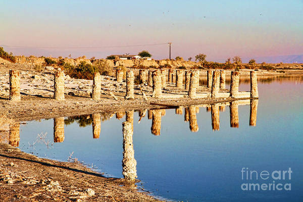 Photograph - Reflection On The Shore Of The Salton Sea By Diana Sainz by Diana Raquel Sainz
