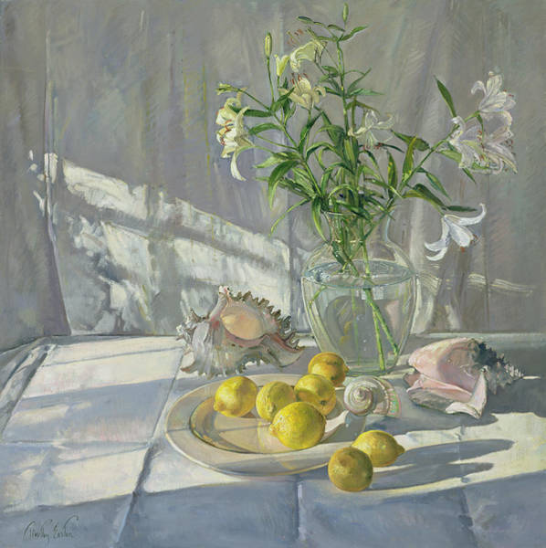 Tablecloth Painting - Reflections And Shadows  by Timothy  Easton