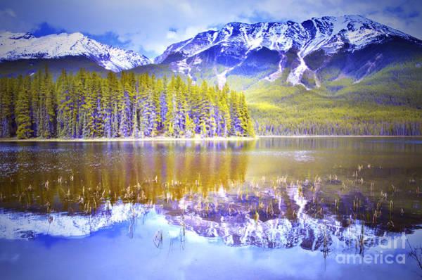 Photograph - Reflections At Buck Lake by Tara Turner