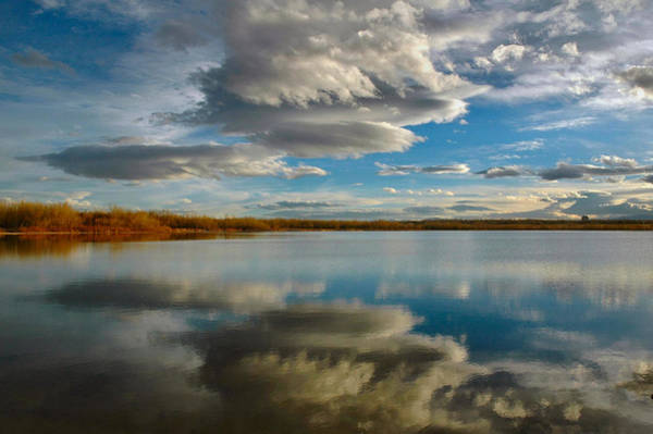 Photograph - Reflections At Cherry Creek by Lynn Bauer