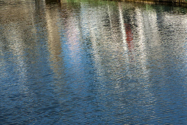 Photograph - Reflections by Carol Erikson