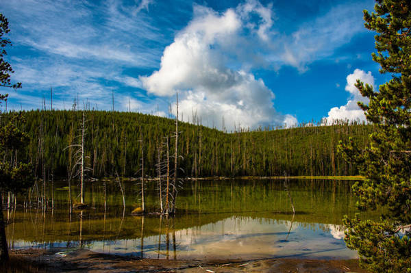 Photograph - Reflections by Harry Spitz